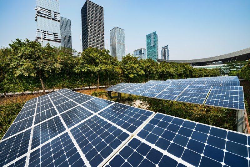 Sustentabilidade Empresarial - Prone Contabilidade