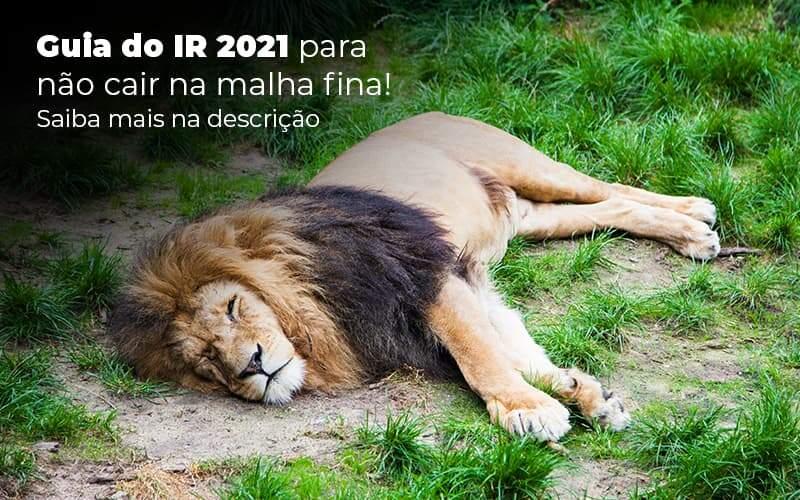 Guia Ir 2021 Para Nao Cair Na Malha Fina Saiba Mais Na Descricao Post (1) - Quero montar uma empresa